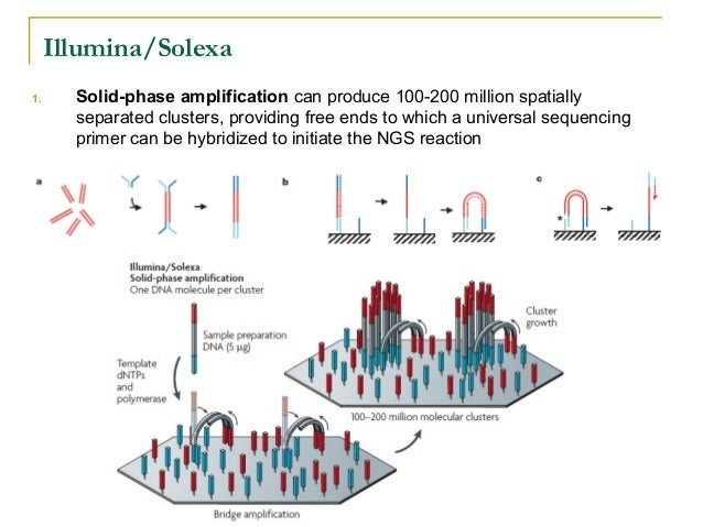 New Generation Sequencing Technologies An Overview