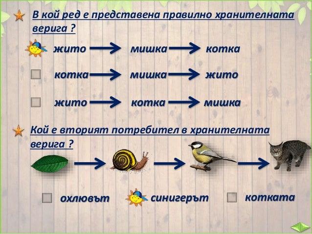 План на урока: Речник: съобщество – всички растения и животни от дадено място /среда на живот/, които са свързани помежду ...