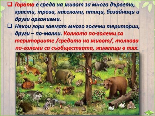  Обитателите в едно блато, река или гора са членове на по-малки съобщества. Те заемат по-малки пространства.  Затова вид...