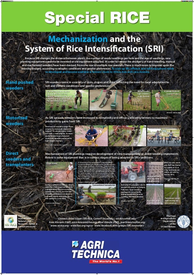 Mechanization and the System of Rice Intensification (SRI) Because SRI changes the distance between plants, the number of ...