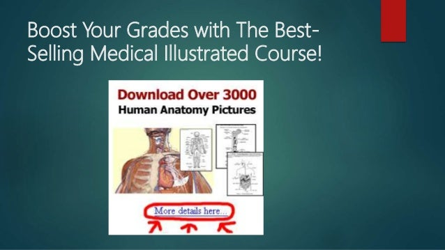 3000 human anatomy complete diagram and lessons ccuart Gallery