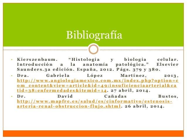 30042014 biofisica sindromedeinsuficienciaarterial (1)
