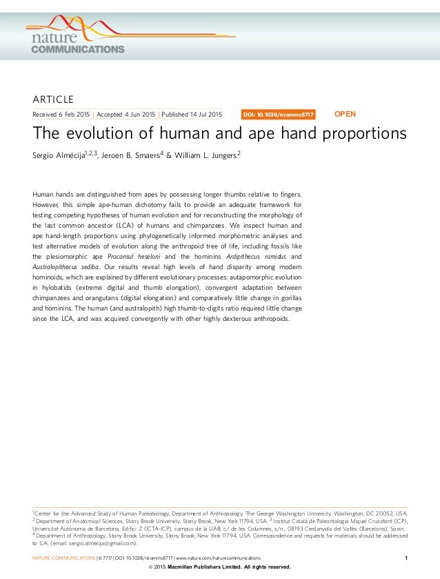 The evolution of human and ape hand proportions