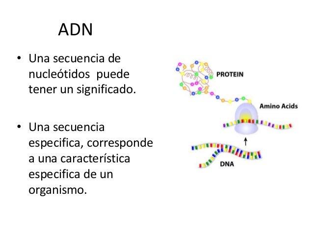301 Cristobalreyes Presentacion Powerpoint