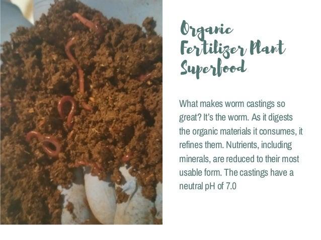 Pure And Premium Worm Casting Sunman Export Slide 3