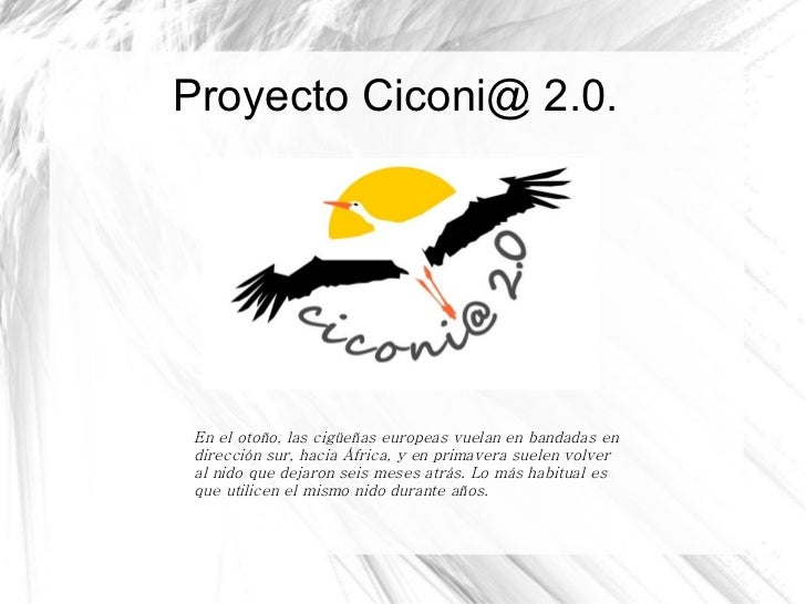 Proyecto Ciconi@ 2.0. En el otoño, las cigüeñas europeas vuelan en bandadas en dirección sur, hacia África, y en primavera...