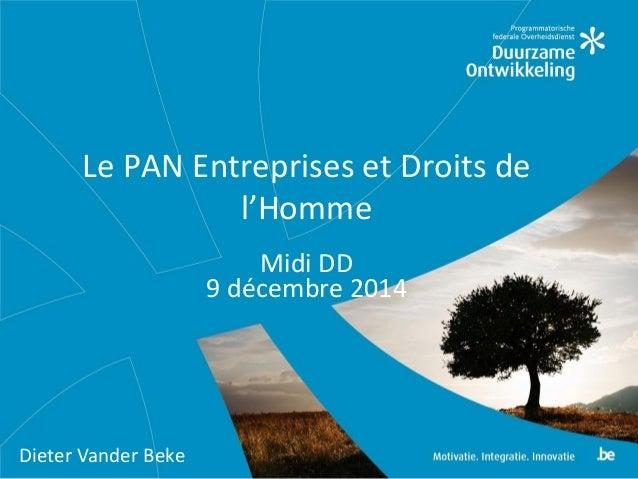 Le PAN Entreprises et Droits de l'Homme Midi DD 9 décembre 2014 Dieter Vander Beke
