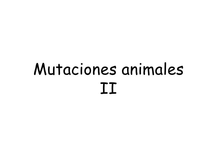 Mutaciones animales II