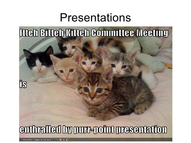 30 Web 2 resources - the lolcats edition Slide 2