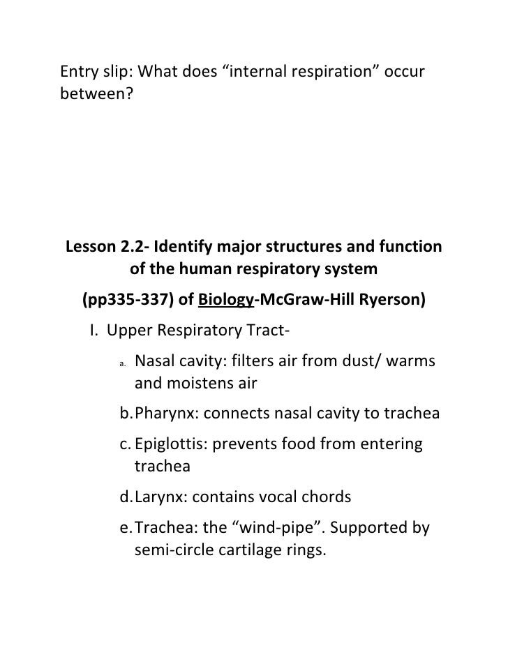 30 S 2 2 Id Major Structures Of Respiratory System