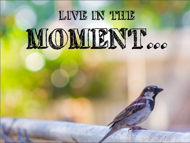 LIVE IN THEMOMENT...