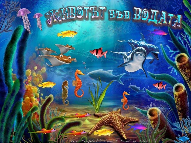 Условията за живот в соленоводните и сладководните басейни са различни. Затова и съобществата от организми в тях се различ...