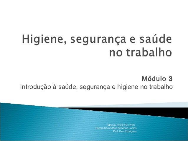 Módulo 3 Introdução à saúde, segurança e higiene no trabalho Módulo 3/CEF/Set.2007 Escola Secundária de Maria Lamas Prof. ...