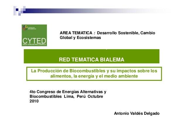 Jornadas Iberoamericanas sobre Tecnologías para el Uso Eficiente de Combustibles y Energías a Partir de la Biomasa Azucare...