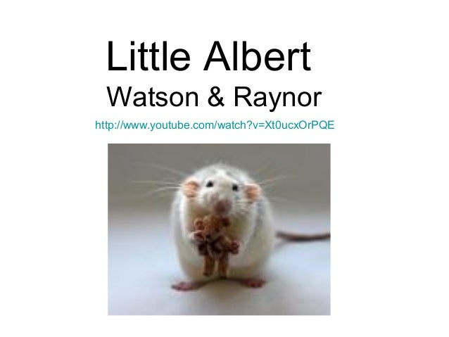 the use of classical conditioning to create a phobia in the little albert experiment John b watson and rosalie rayner's 1920 conditioning of the infant albert b is   the albert study as an example of myth making in the history of psychology   use albert's conditioning to illustrate the applicability of classical conditioning to   (1920) report reveals little evidence either that albert developed a rat phobia  or.