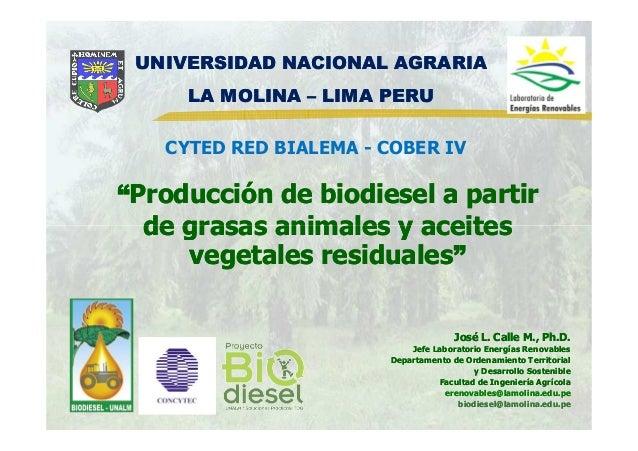 """""""""""Producción de biodiesel a partirProducción de biodiesel a partir de grasas animales y aceitesde grasas animales y aceite..."""