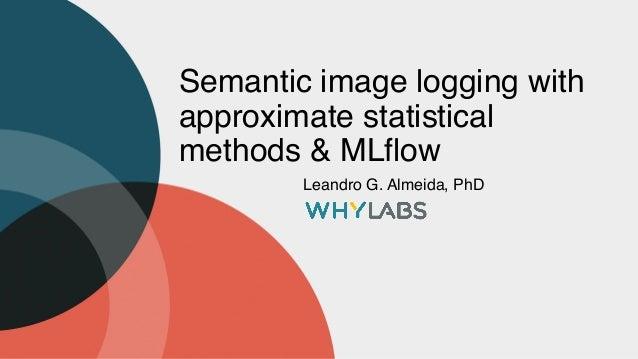 Semantic image logging with approximate statistical methods & MLflow Leandro G. Almeida, PhD