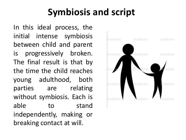 An Analysis of the Ideal Parent