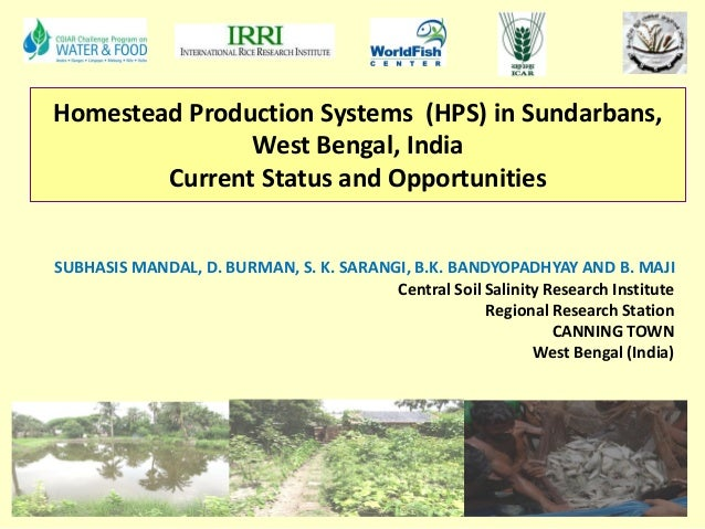 Homestead Production Systems (HPS) in Sundarbans, West Bengal, India Current Status and Opportunities SUBHASIS MANDAL, D. ...