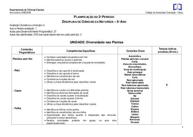 Departamento de Ciências Exactas Ano Lectivo 2008/2009 Colégio da Imaculada Conceição - Viseu 1 3 PLANIFICAÇÃO DO 2º PERÍO...