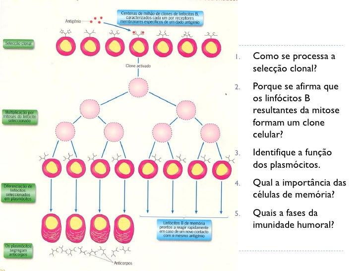 паразиты лямблии лечение народными средствами