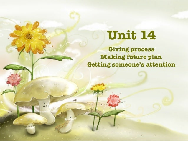 Unit 14      Giving process    Making future planGetting someone's attention