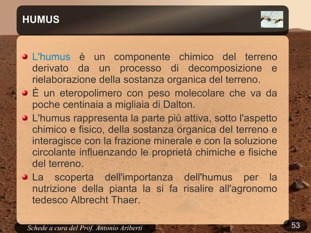 """53Schede a cura del Prof. AribertiChi ha """"ragione"""": la scienza o la Bibbia?"""