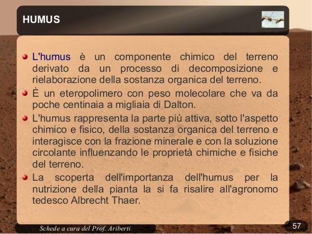 57Schede a cura del Prof. AribertiHUMUSLhumus è un componente chimico del terrenoderivato da un processo di decomposizione...