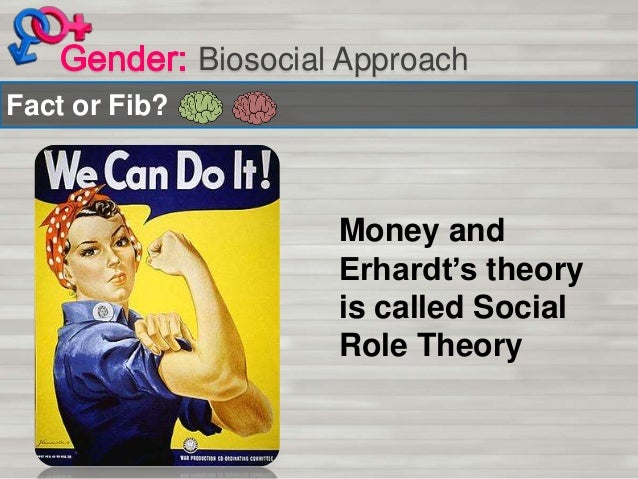 biosocial theory of gender d ment What do feminists mean when they refer to a patriarchal society what is a feminist theory of patriarchy  putting gender relations at the center of the story of.