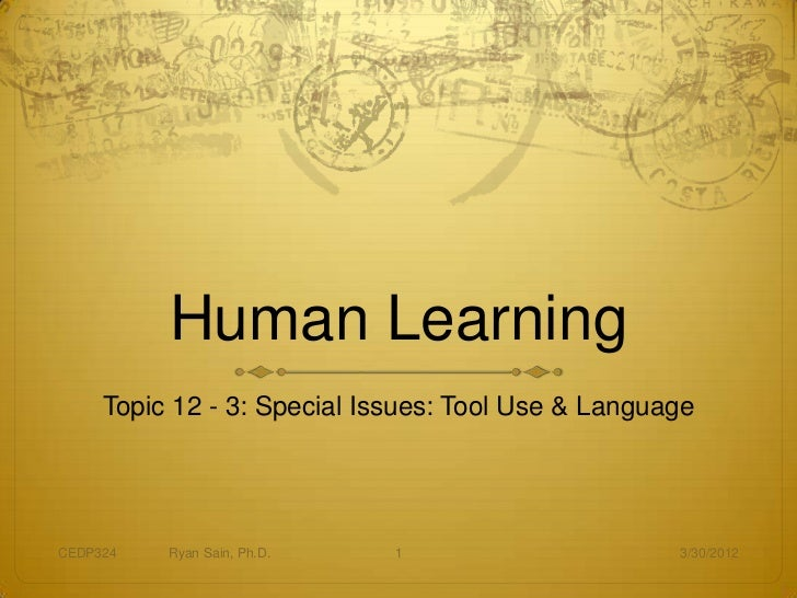 Human Learning     Topic 12 - 3: Special Issues: Tool Use & LanguageCEDP324   Ryan Sain, Ph.D.   1                      3/...