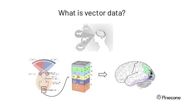 The Rise of Vector Data Slide 2