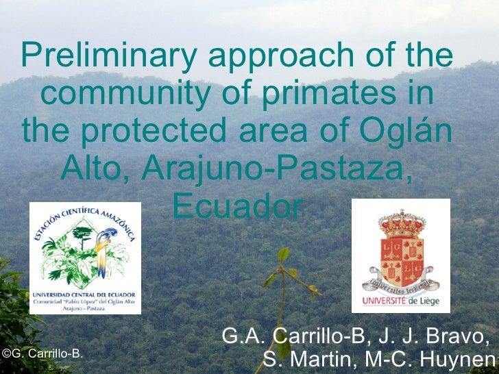 Preliminary approach of the community of primates in the protected area of Oglán Alto, Arajuno-Pastaza, Ecuador G.A. Carri...
