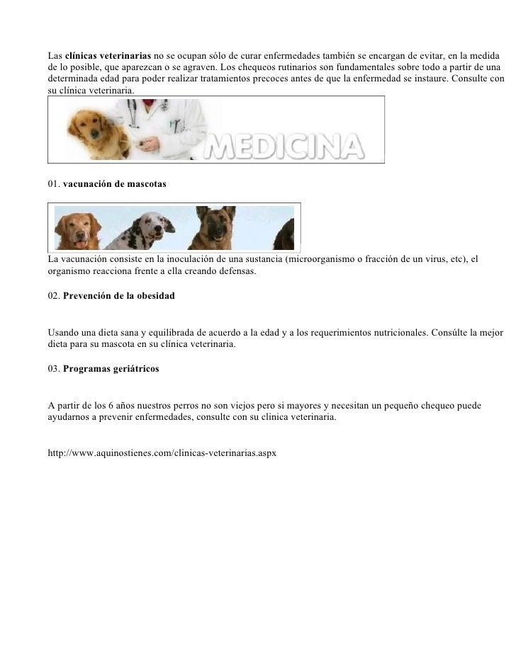 Las clínicas veterinarias no se ocupan sólo de curar enfermedades también se encargan de evitar, en la medida de lo posibl...