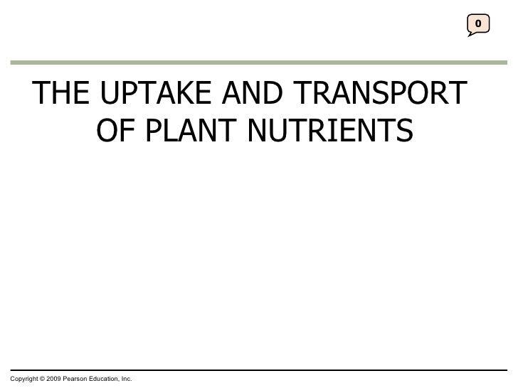 32 Lecture Presentation