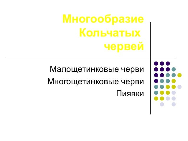 Многообразие Кольчатых червей Малощетинковые черви Многощетинковые черви Пиявки