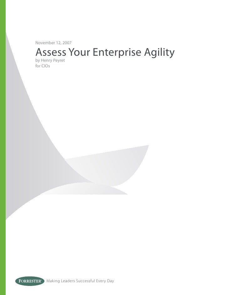 November 12, 2007  Assess Your Enterprise Agility by Henry Peyret for CIOs          Making Leaders Successful Every Day