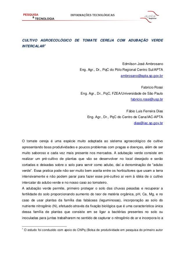CULTIVO AGROECOLÓGICO DE TOMATE CEREJA COM ADUBAÇÃO VERDE INTERCALAR1 Edmilson José Ambrosano Eng. Agr., Dr., PqC do Pólo ...
