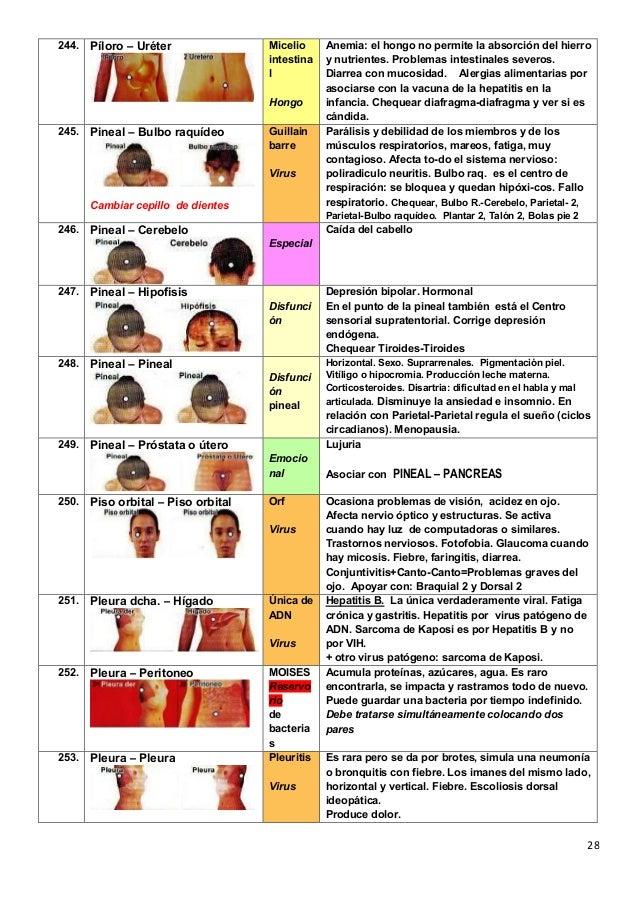 Gastritis Y Fiebre