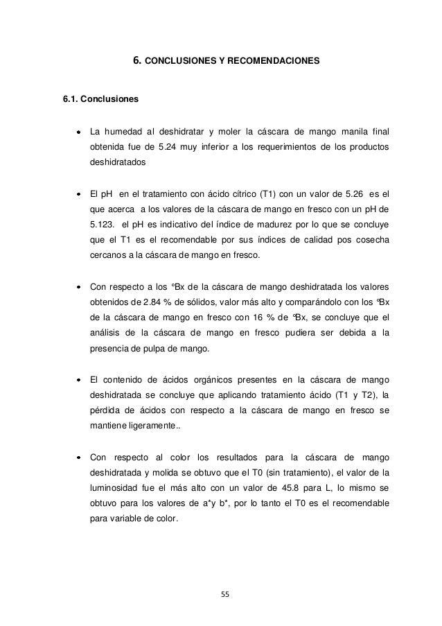336228766 caracterizacion-de-mango