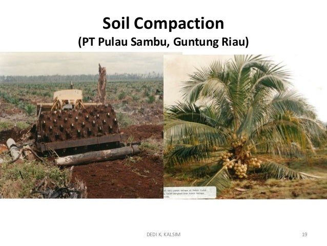 Physical properties of peat soil in rapp related to wt for Soil 95 compaction