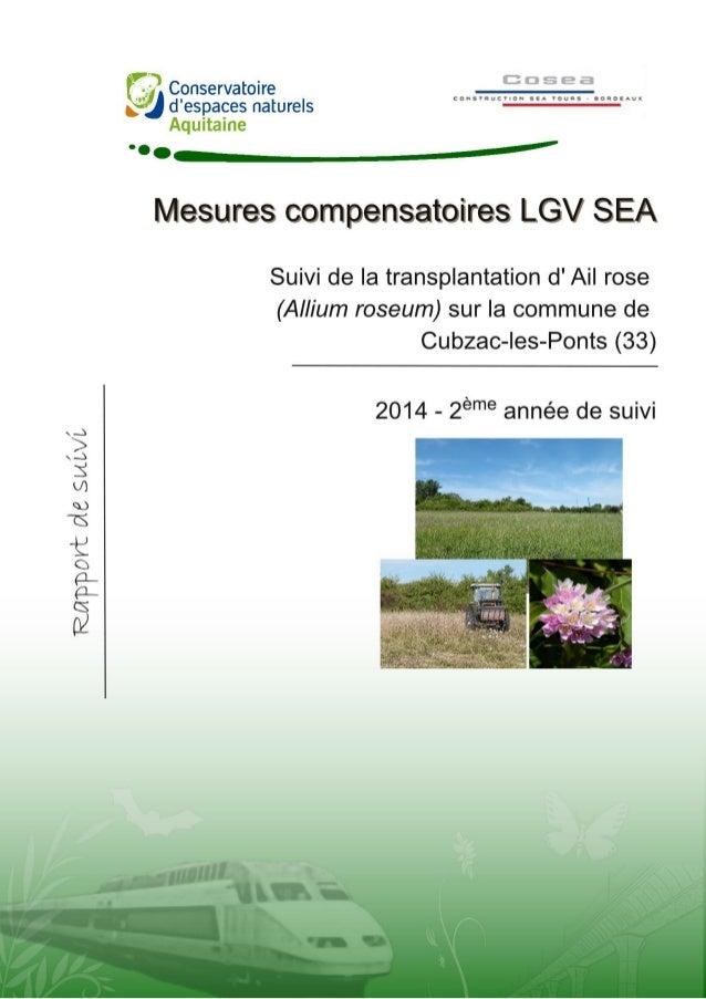 Pascal TARTARY 2014 TARTARY P. 2014. Suivi de la transplantation des pieds d'ail rose (Allium roseum) sur la commune de Cu...