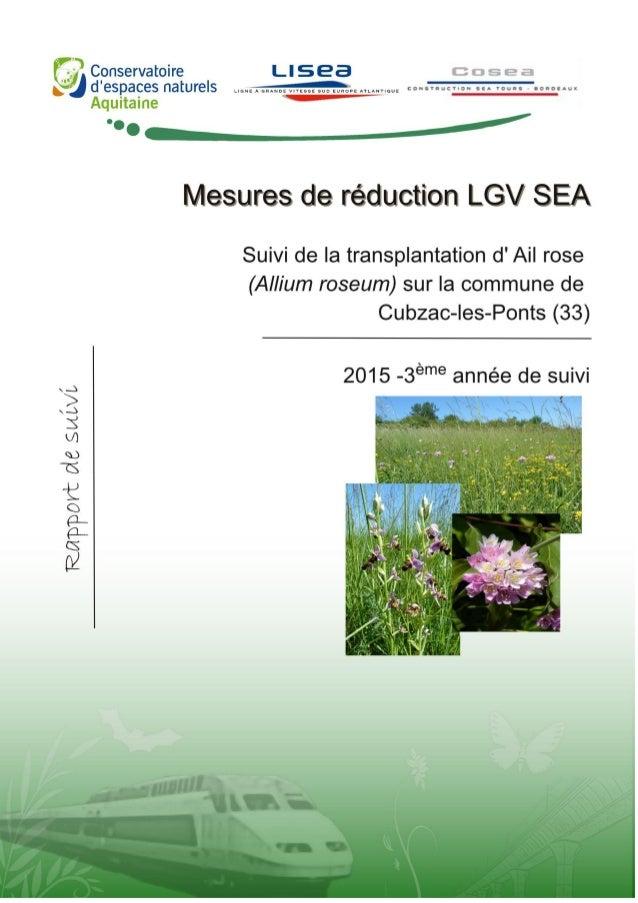 Pascal TARTARY 2015 TARTARY P. 2015. Suivi de la transplantation des pieds d'ail rose (Allium roseum) sur la commune de Cu...