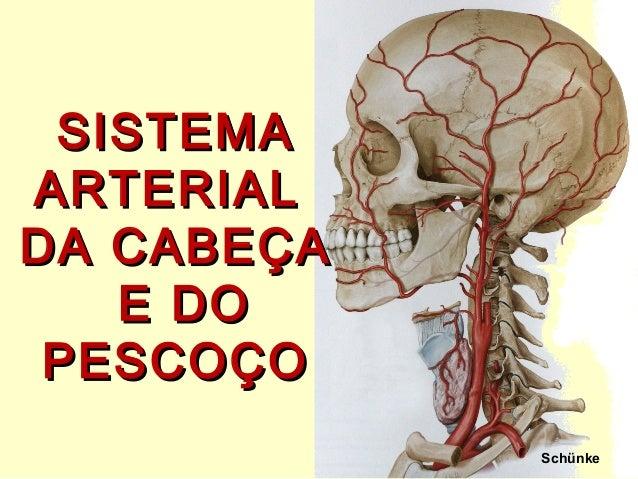 Schünke SISTEMASISTEMA ARTERIALARTERIAL DA CABEÇADA CABEÇA E DOE DO PESCOÇOPESCOÇO