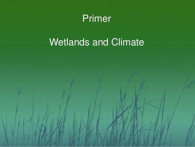 Primer  Wetlands and Climate