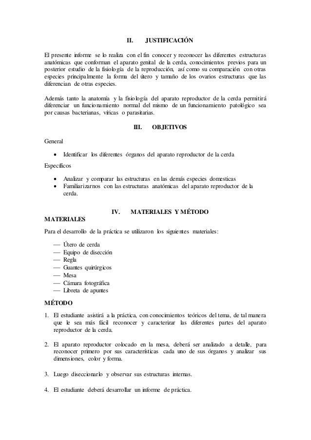 Bonito Mcgraw Anatomía Colina Y Edición 11 De La Fisiología Adorno ...