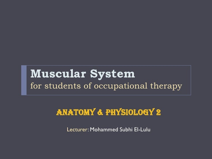 Muscular Systemfor students of occupational therapy      Anatomy & physiology 2        Lecturer: Mohammed Subhi El-Lulu