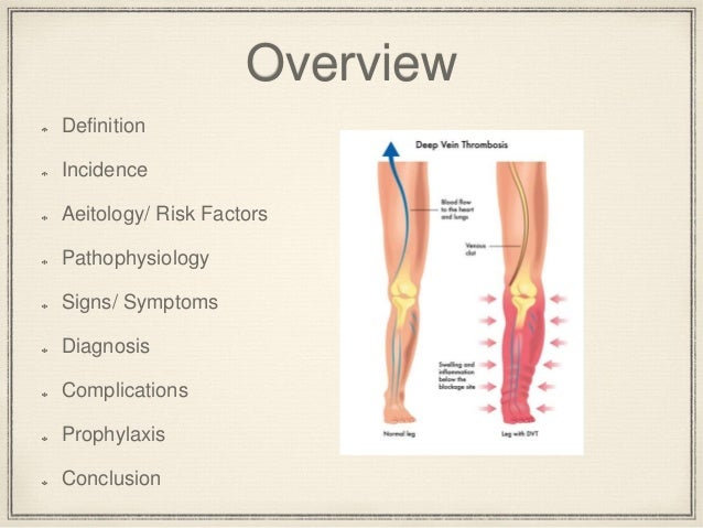 dvt prophylaxis, Human Body