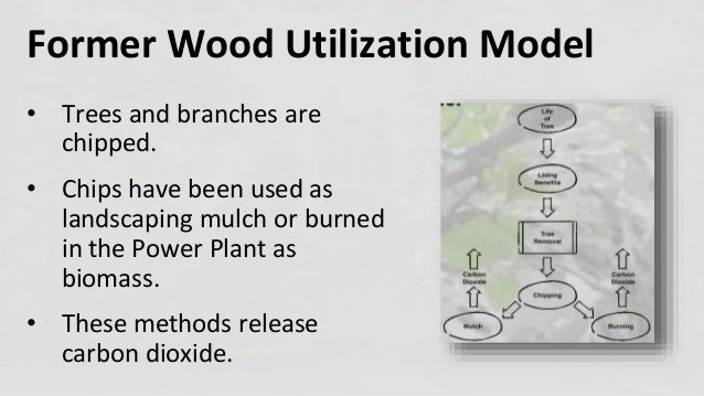Urban Wood Repurposing at Michigan State University Slide 3