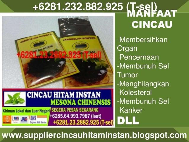 +6281.232.882.925 (T-sel) www.suppliercincauhitaminstan.blogspot.com MANFAAT CINCAU -Membersihkan Organ Pencernaan -Membun...
