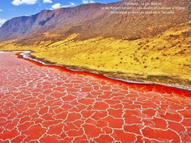 Tanzanie : Le Lac Natron  Le lac Natron est un lac salé alcalin endoréique d'origine  tectonique présent au nord de la Tan...